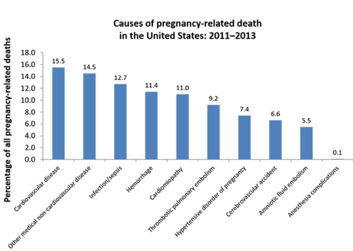 Causes of pregnancy-related death in the United States: 2011-2013